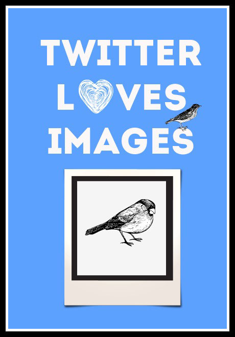 Why You Must Tweet More Images and Other Awesome Twitter Facts [Infographic] http://sociallysorted.com.au/tweet-more-images-twitter-facts-infographic