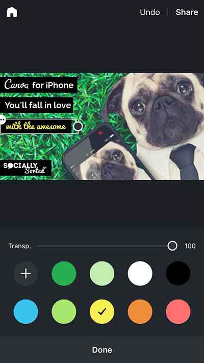 Canva for Iphone - editing on iphone