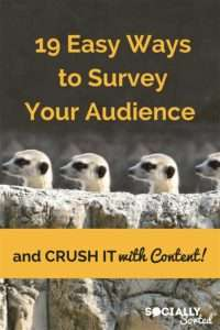 Have you surveyed your audience lately? It's the best way to know what content will crush it and help the most. Check out this post - 19 Easy Ways to Survey Your Audience and Crush it with Content.