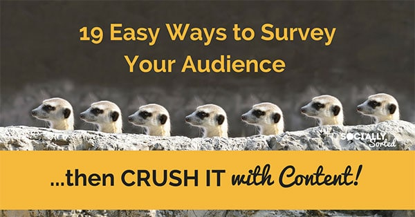 19 Easy Ways to Survey Your Audience and then Crush it with Content