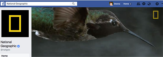 National Geographic Facebook Cover Video - 7 Creative Facebook Cover Videos