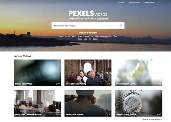 Pexels video - How To Select The Best Stock Footage To Create Compelling Visuals For Social Media