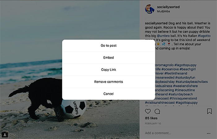 Choose Embed on the Instagram Image - 17 Hidden Instagram Hacks and Features (That Will Make You Squeal With Delight)
