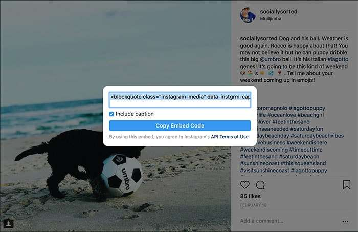 Copy the embed code as it appears on the screen - 17 Hidden Instagram Hacks and Features (That Will Make You Squeal With Delight)