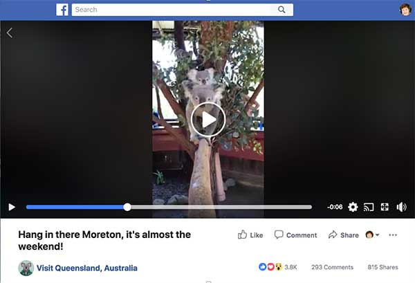 Tourism Queensland Facebook Vertical Video - 3 Engaging Ways to Rethink Your Social Video Strategy
