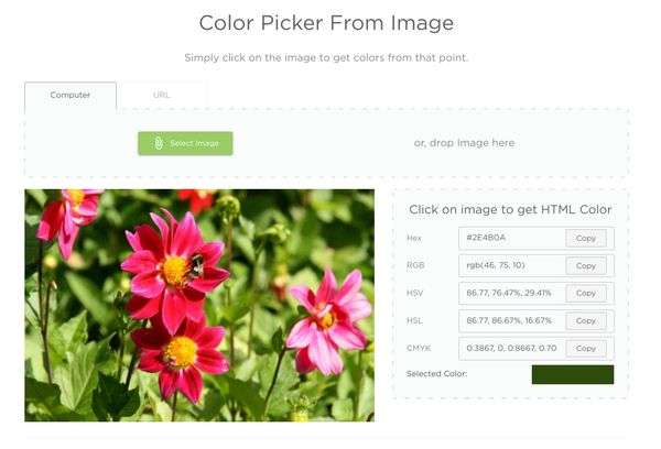 Color Picker from Image Resize Tool - 5 Free Image and Photo Editing Tools for Non-Designers