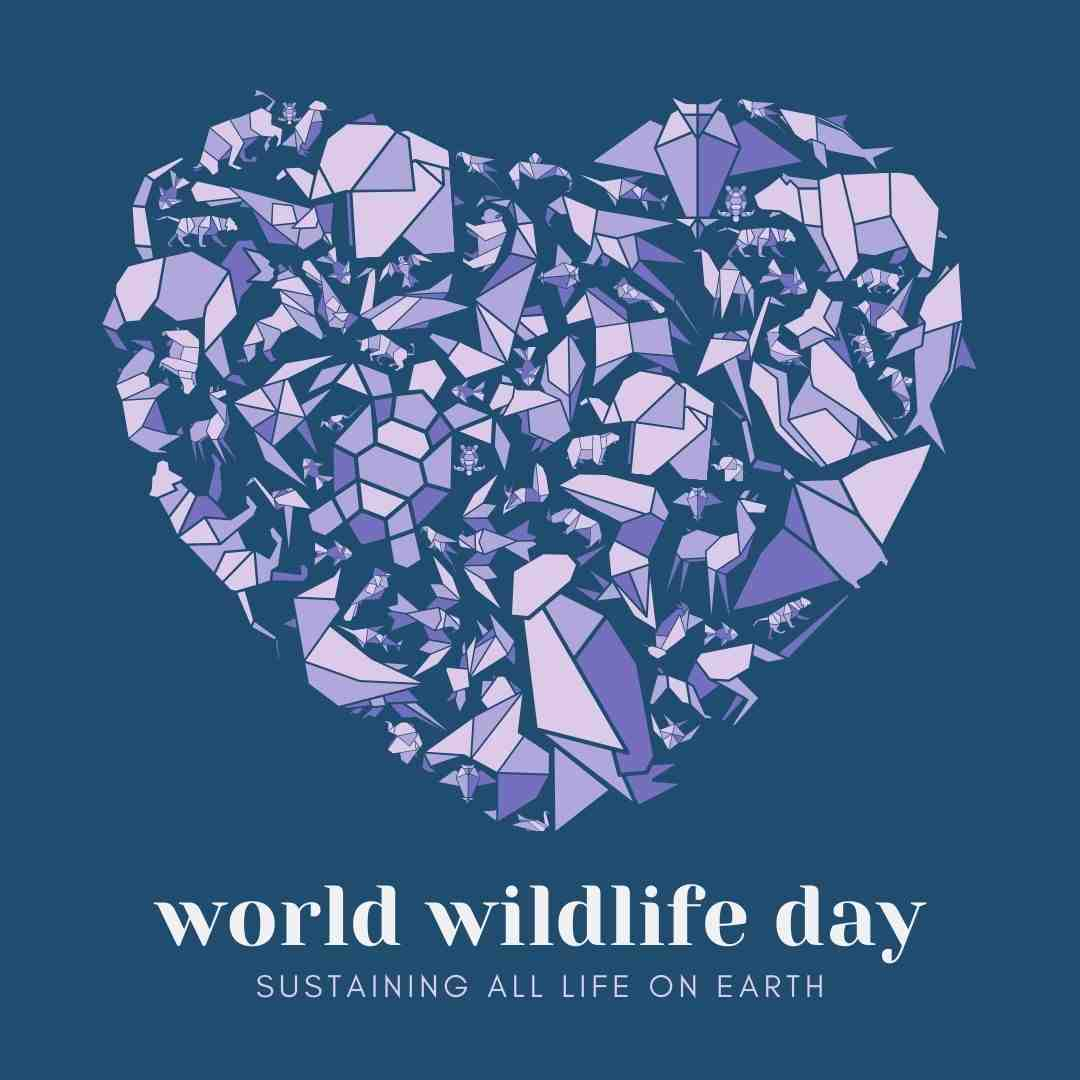 Free Canva Template (World Wildlife Day) and 60+ March Social Media Holiday Ideas