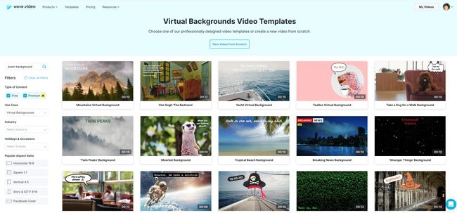 Wave Virtual Background Videos for Zoom