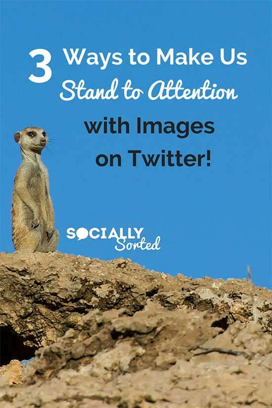 3 Ways to Make us Stand To attention with Images on Twitter