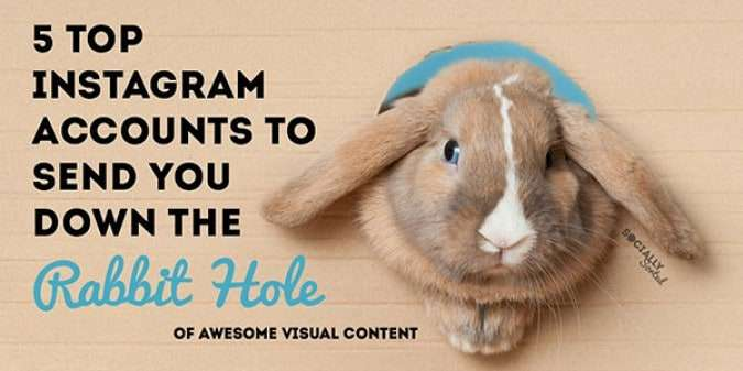 5 Top Instagram Accounts to Send You Down a Rabbit Hole of Visual Content