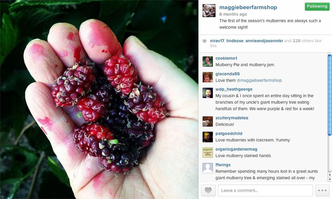 Post like a Fan, not a Marketer - Maggie Beer